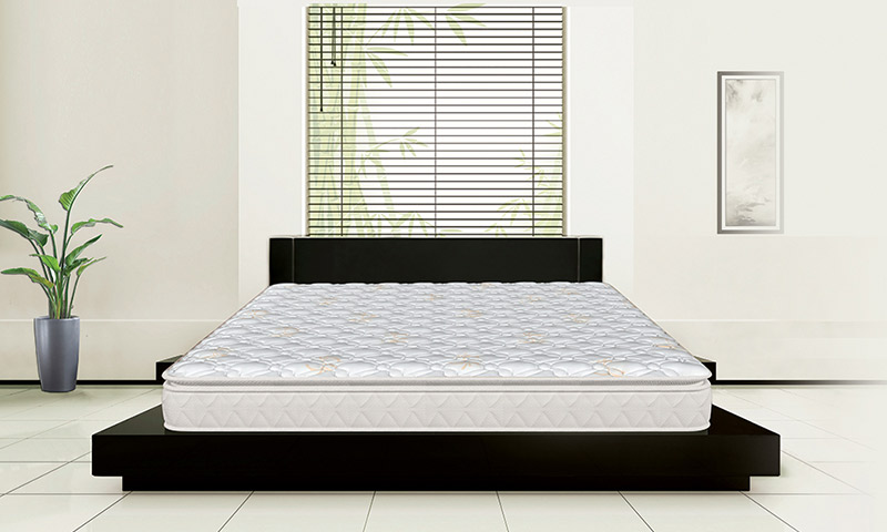 sleepwell-my-mattress-range